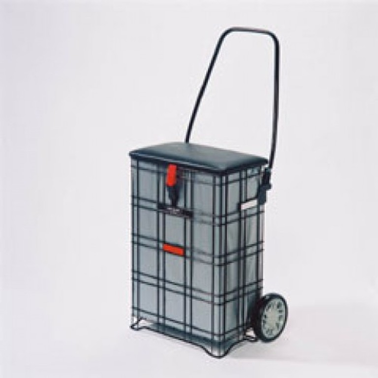 Shopping Trolley with Seat